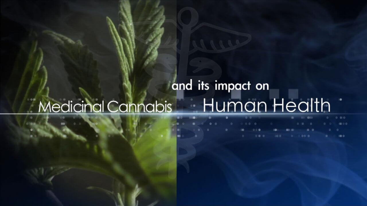 medicinal-cannabis-and-its-impact-on-human-health