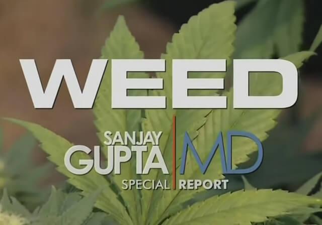 weed cnn documentary rent free